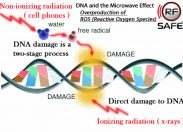 NTP investigates mechanisms responsible for  DNA Breaks, Oxidative Stress, and Changes in Gene Expression from Smartphone radiation