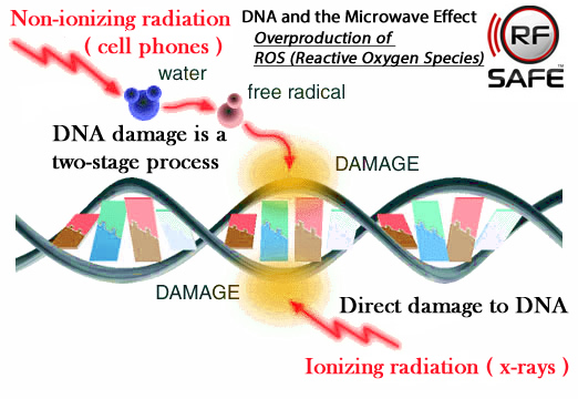 Scientists End 13 Year Debate Proving Non-ionizing RF