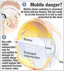 Image result for cellular phones and radiation