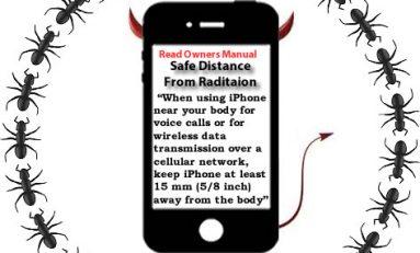 Radiation ants study   – RF (Radio Frequency) Safe