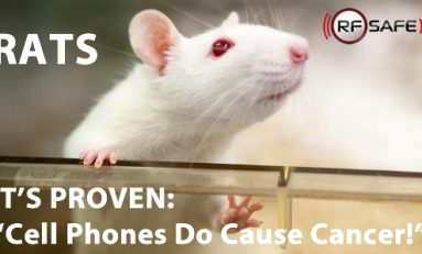 World's Largest Animal Study on Cell Tower Radiation Confirms Cancer Link