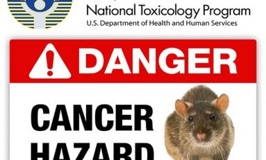 Wake-up call - US Government finds cancer risk from cell phone radiation