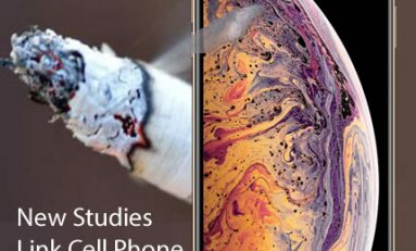 "Now there is ""Clear Evidence of Cancer"" from Cell Phone Radiation"