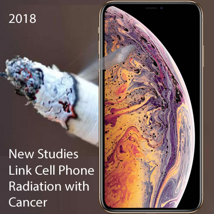 "Now there is ""Clear Evidence of Cancer"" from Cell Phone"