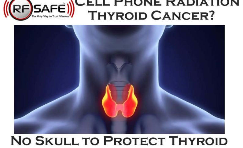 Negative Thyroid Impact from Cell Phone Radiation