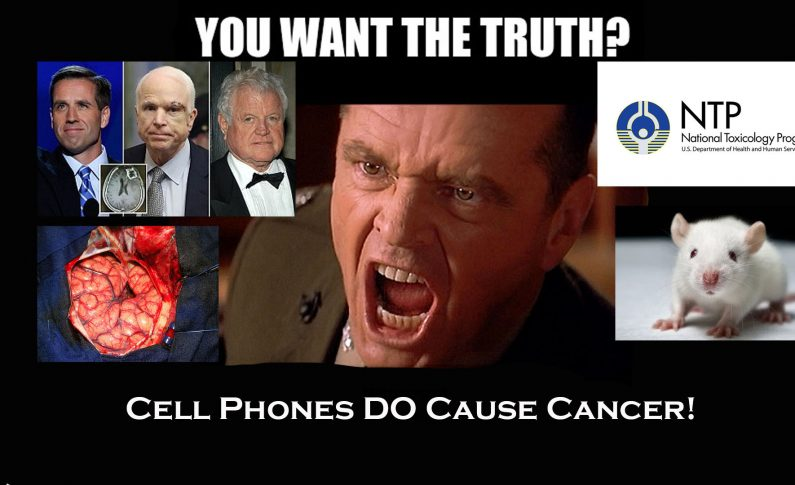 NTP First Federal Agency  Scientists Admit To Using Cell Phone Radiation Precautions
